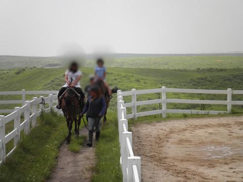 馬引き体験2.jpg